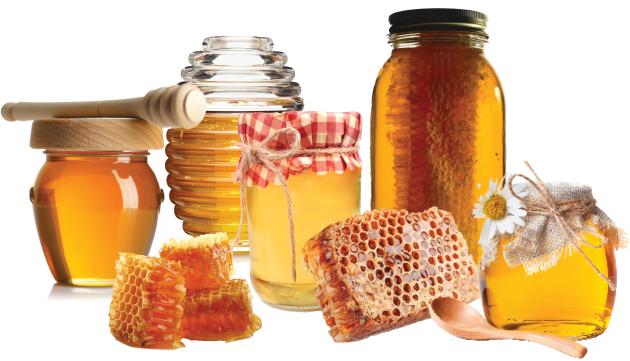 Oh, Honey Honey!